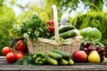 Безвредная и экологически чистая обработка томатов и огурцов при созревании