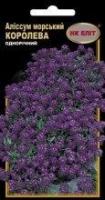 Цветы Алиссум Морской королева