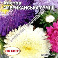 Цветы Астра смесь Американская