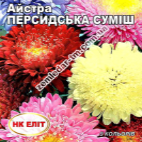Цветы Астра смесь Персидская