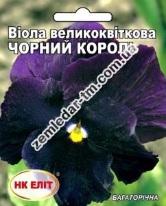 Цветы Виола Черный Король