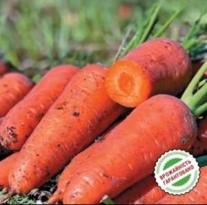 Морковь Эмперор F1