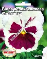 Цветы Виола Фламинго