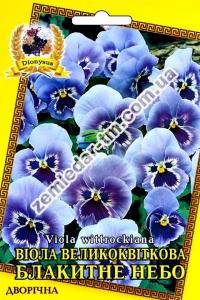 Цветы Виола Голубое Небо