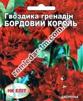 Цветы Гвоздика гренадин Бордовый Король