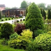 Набор для защиты хвойных растений от грибковых болезней и вредителей №2