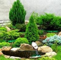Набор для защиты хвойных растений от грибковых болезней и вредителей №3