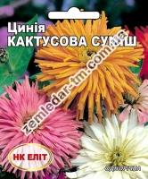 Цветы Циния смесь Кактусовая