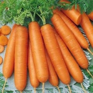 Морковь Ланге Роте Штумпфе