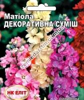 Цветы Матиола смесь Декоративная