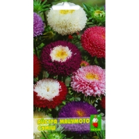 Цветы Астра смесь Мацумото Д
