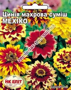 Цветы Циния Мехико