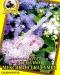 Цветы Агератум Мексиканская смесь