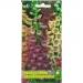 Цветы Наперстянка крупноцветковая