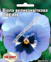 Цветы Виола Океан