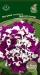 Цветы Петуния Пируэтт Парпл F1