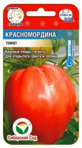 Помидор Красномордина