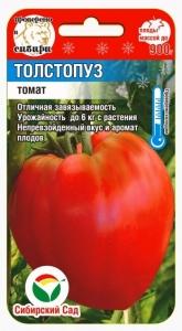 Помидор Толстопуз