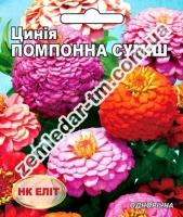 Цветы Циния смесь Помпонная