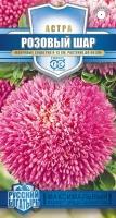 Цветы Астра Розовый Шар