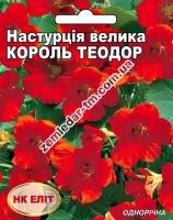 Цветы Настурция Король Теодор