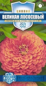 Цветы Циния Великан лососевый