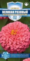 Цветы Циния Великан розовый