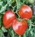 Помидор Бычье сердце красное